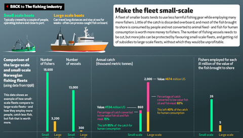 EyeOverFishing.org - Compare fisheries-13.jpg