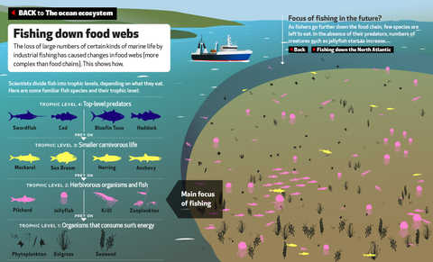 EyeOverFishing.org - Compare fisheries-2.jpg